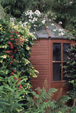Garden Shed Photographic Print by Archie Young