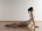 Female Stretching, Artwork Premium Photographic Print by  SCIEPRO