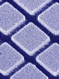 Gallium Nitride Nanowires, SEM Photographic Print by Peidong Yang