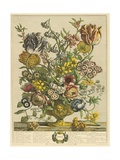 April Premium Giclee Print by Robert Furber