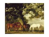 Green Pastures Giclee-tryk i høj kvalitet af George Stubbs