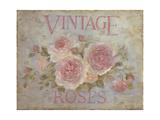 Vintage Rose Premium Giclee Print by Debi Coules