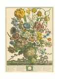 March Premium Giclee Print by Robert Furber