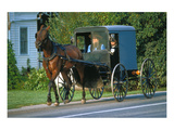 Amish in a carriage, Pennsylvania, USA Giclee-tryk i høj kvalitet