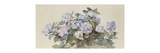 Hydrangeas Giclee Print by Madeleine Lemaire