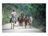 Native people on horses, Costa Rica - Birinci Sınıf Giclee Baskı