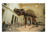 Tyrannosaurus Rex (Sue), Field Museum in Chicago, Illinois, USA - Birinci Sınıf Giclee Baskı
