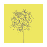 Yellow Happy Flower Photographic Print by Jan Weiss