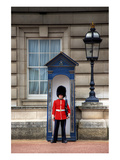 Royal Guard in front of Buckingham Palace, London Premium Giclee Print