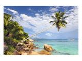 Anse Patates beach, La Digue Island, Seychelles Giclee-tryk i høj kvalitet