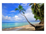Beach at The Sandpiper Hotel, Holetown, St. James, Barbados, Caribbean Wydruk giclee premium