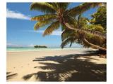 Anse Volbert beach, Praslin Island, Seychelles Giclee-tryk i høj kvalitet