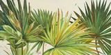 Arte Verde I Poster von Patricia Quintero-Pinto