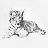 Tiger Poster by Vivien Rhyan