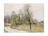 The Edge of the Forest in Spring, in Evening Giclee Print by Alfred		 Sisley