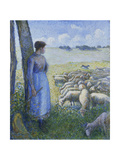 Shepherdess and Sheep; Bergere et Moutons Print by Camille Pissarro
