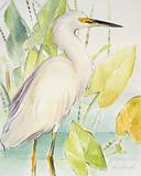 Sorrowing Egret Affiches par Lanie Loreth