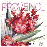 Provence Prints by Pascal Cessou