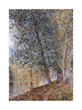 Autumn, the Banks of the Loing Print by Alfred		 Sisley