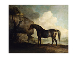 Marske', a Dark Bay Racehorse, in a Rocky River Landscape Posters by George		 Stubbs
