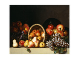 Apples, Pears, Plums and Grapes Giclee Print by Charles Bird		 King