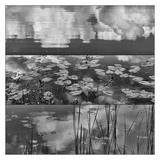 Pond-Land 3 Posters by Jean-François Dupuis