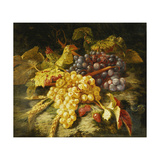 Grapes, Bearded Wheat and Strawberries on a Rocky Ledge Lámina giclée por Saint-Jean Simon