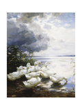 Ducks at the Lake's Edge Premium Giclee Print by Alexander		 Koester