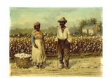 Picked Cotton Giclee Print by William Aiken Walker