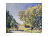Around the Forest, a Clearing Giclee Print by Alfred		 Sisley