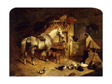 The Interior of a Stable with a Dapple Grey Horse, Ducks, Goats, and a Cockerel by a Manger Premium Giclee Print by John Frederick Herring I