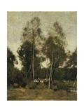 Clairiere du Bois Pierre, aux Evaux, Pres Chateau-Thierry Láminas por Jean Baptiste Camille Corot