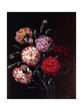 Carnations Prints by Johan Laurentz Jensen