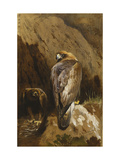 Golden Eagles at their Eyrie Giclee Print by Archibald		 Thorburn