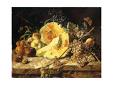 A Still Life with Fruit, Nuts and Insects Art by Leopold		 Zinnogger
