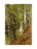 A Wooded River Landscape Poster by Peder Mork Monsted