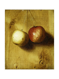 Two Apples Giclee Print by Stanley S.		 David