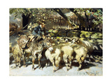A Shepherd with his Flock Premium Giclee Print by Heinrich Zugel