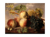 Peaches and Grapes with a Cabbage White on a Marble Ledge Prints by Jan Frans Dael