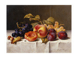 Grapes, Peaches, Plums and Nuts on a Draped Table Prints by Emilie		 Preyer