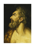 Head of Saint John the Baptist Giclee Print by Floris Frans