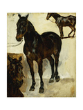 Three Studies of Horses Giclee Print by Ferdinand Victor Delacroix