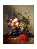 Peaches, Grapes, Plums and Flowers in a Glass vase with a Jay on a Ledge Prints by Arnoldus Bloemers