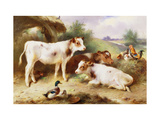 Calves and Poultry by a Byre Print by Walter		 Hunt