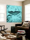 X-Ray Butterfly 4 Print by  Brago