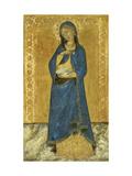 The Virgin Annunciate Giclee Print by Ceccarelli Naddo