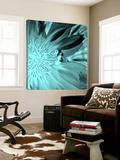 X-Ray Butterfly 3 Prints by  Brago