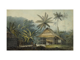 View in the Island of Crakatoa Prints by John		 Webber