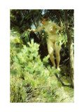 Wood-Sprite Prints by Anders Leonard		 Zorn