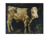 A Bull Calf Giclee Print by Skredsvig Christian